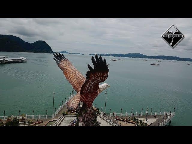 König der Lüfte - Der Weißkopf Seeadler • Vlog #66