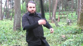 Демонстрация владения мечом