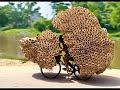 Việt Nam Quê Hương Tôi-Áo Thun Trẻ Việt Nam