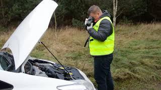 Odzyskana Toyota i zatrzymani podejrzani. Skuteczna praca policjantów i psa tropiącego