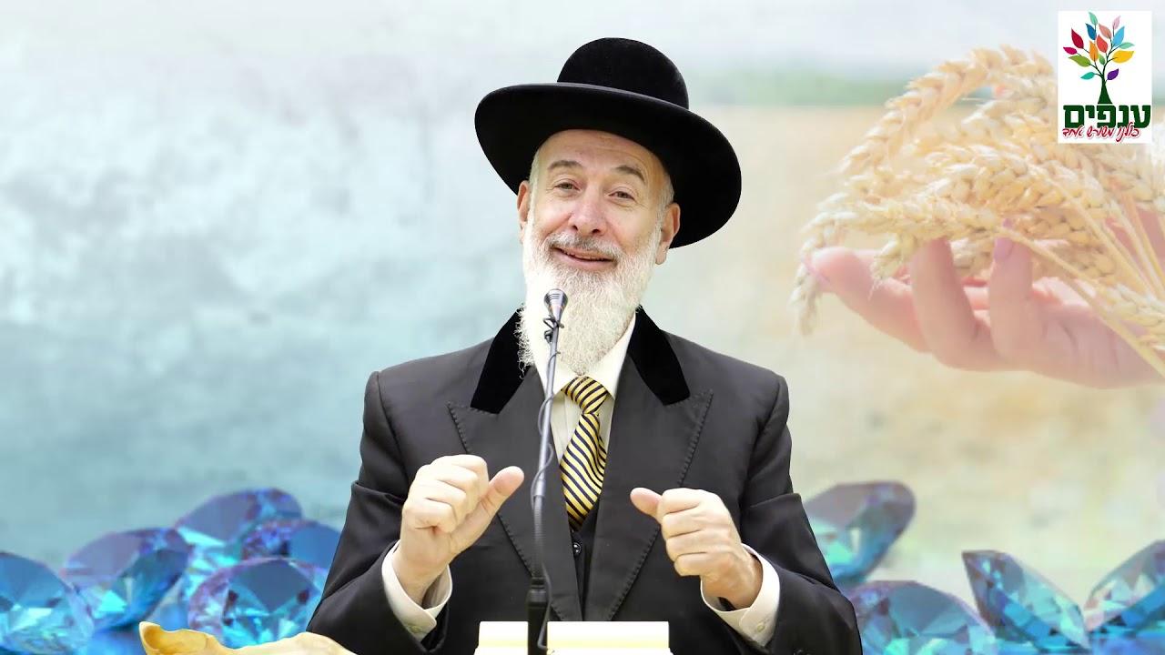 שבועות: מהו חינוך יהודי? - הרב יונה מצגר HD