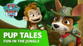 PAW Patrol | Fun in the Jungle | PAW Patrol Official & Friends
