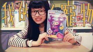 手指猴!美國現在最夯的寵物玩具?│瑄瑄大雜燴 HSUAN_TV