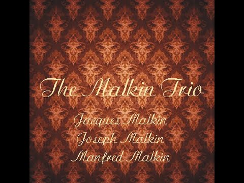 The Malkin Trio - 1928 - Smetana Trio in G minor - II. Allegro ma non agitato