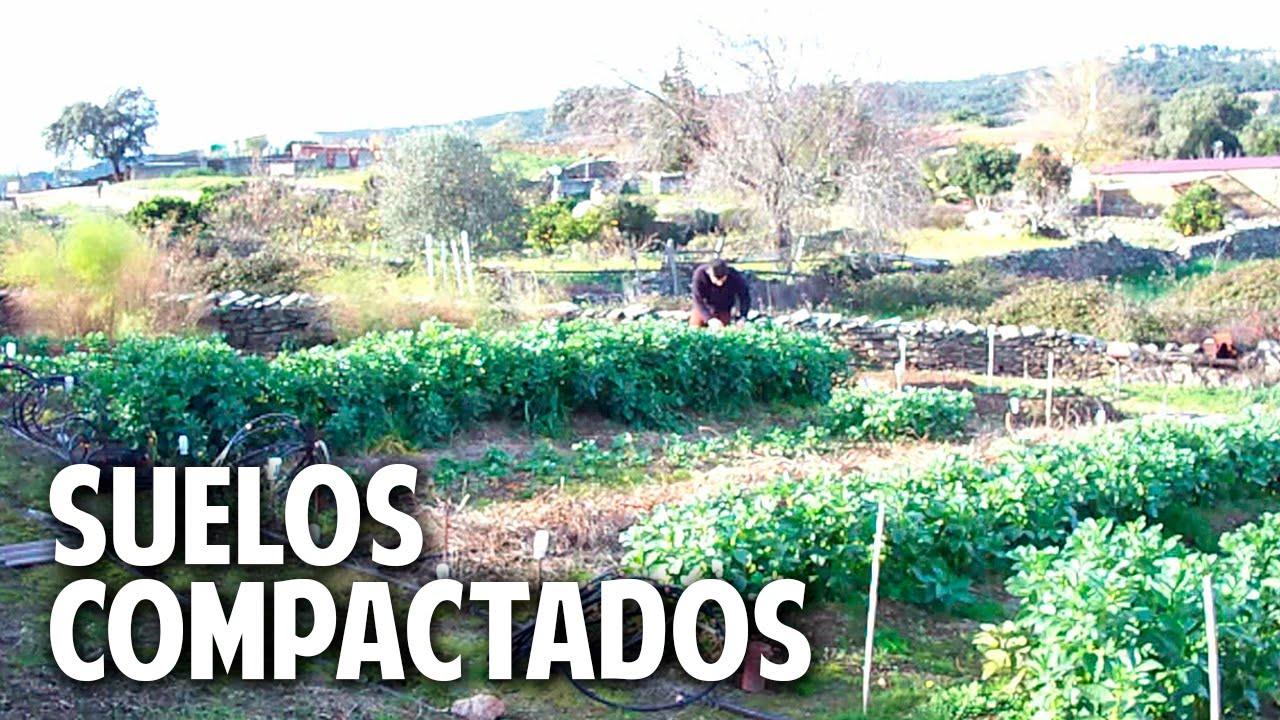 Como evitar y solucionar la compactacion del suelo - Como solar un suelo ...