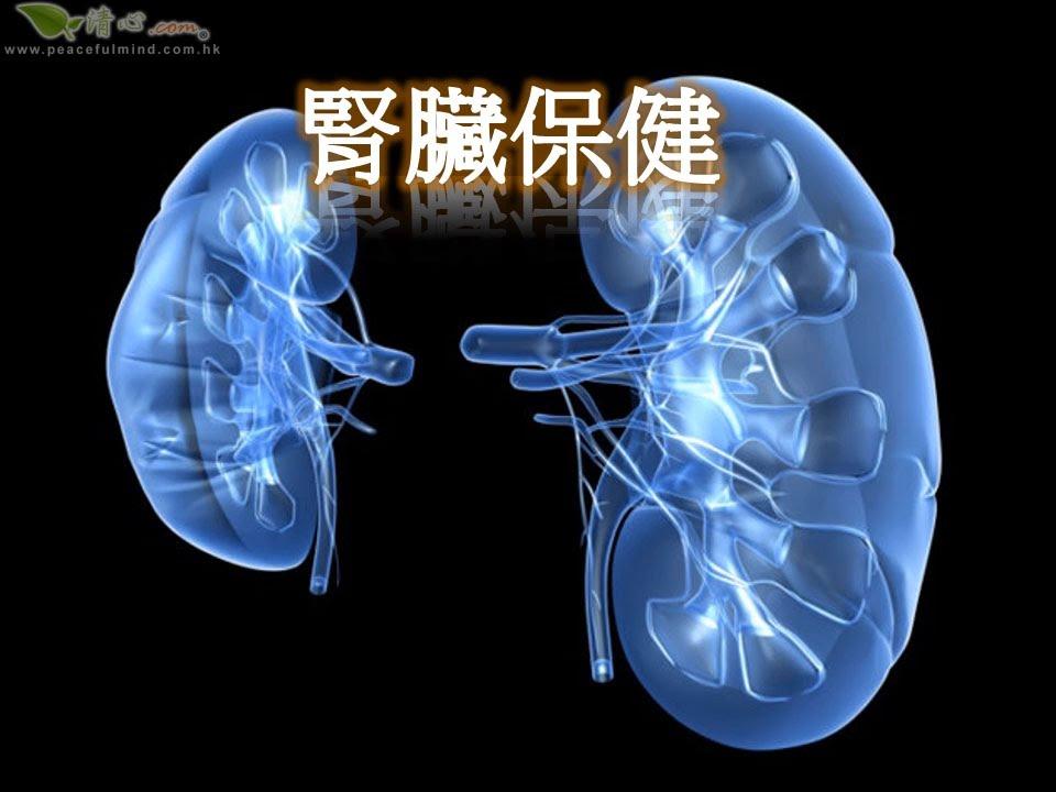 腎臟保健 - YouTube