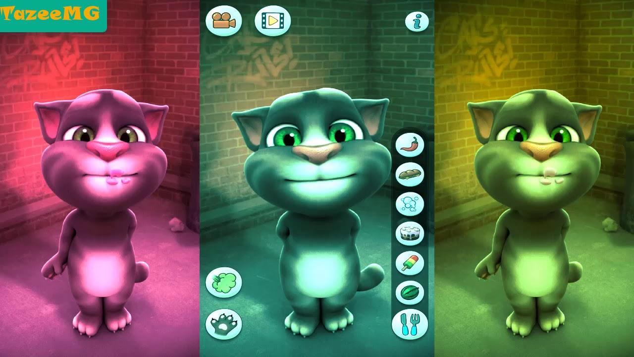 Mèo Tôm Nghịch Ngợm - Talking Tom Cat Gameplay Review