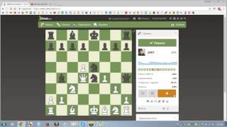 019-Ежедневная тактика на chess.com