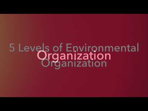 Five Levels of Environmental Organization