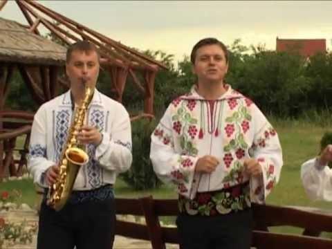 Puiu Codreanu - Mi-o venit un gand asară
