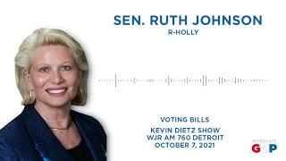 Sen. Johnson talks election reform bills
