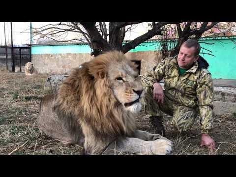 Между любимыми львами Чуком и Малышом!