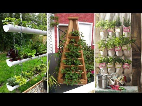 10 Small Backyard Vegetable Garden Ideas