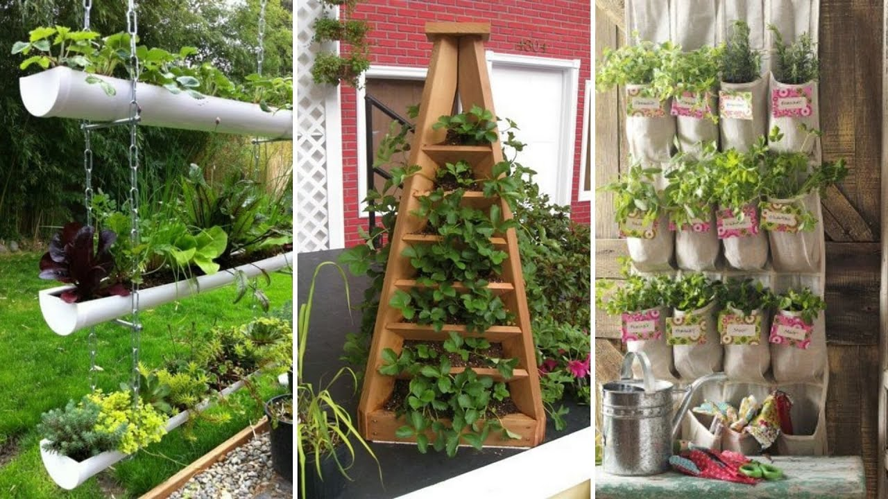 10 Small Backyard Vegetable Garden Ideas
