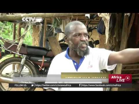 Ivory Coast Cocoa Farmers encroaching into National Parks