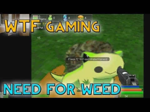Need for Weed 3D! (WTF Gaming)