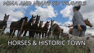 HORSES and last part of Bredevoort  RV TRAVEL VLOG
