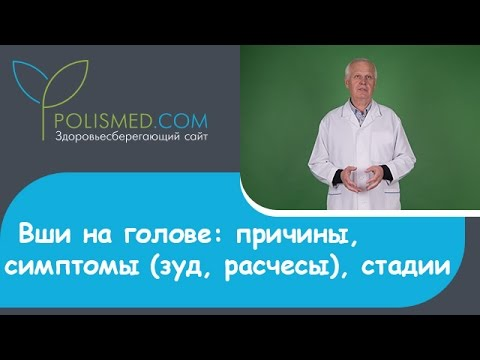 Головной педикулез (вшивость): причины, симптомы (зуд, расчесы), стадии