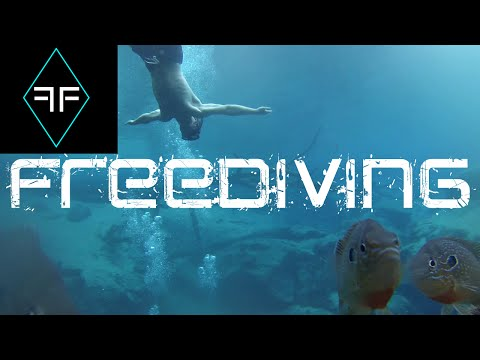 Try it for a Month Episode 1 - Freediving