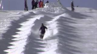 Freestyle Mogul Skiing