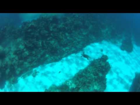 Cayman Brac snorkel trip southside
