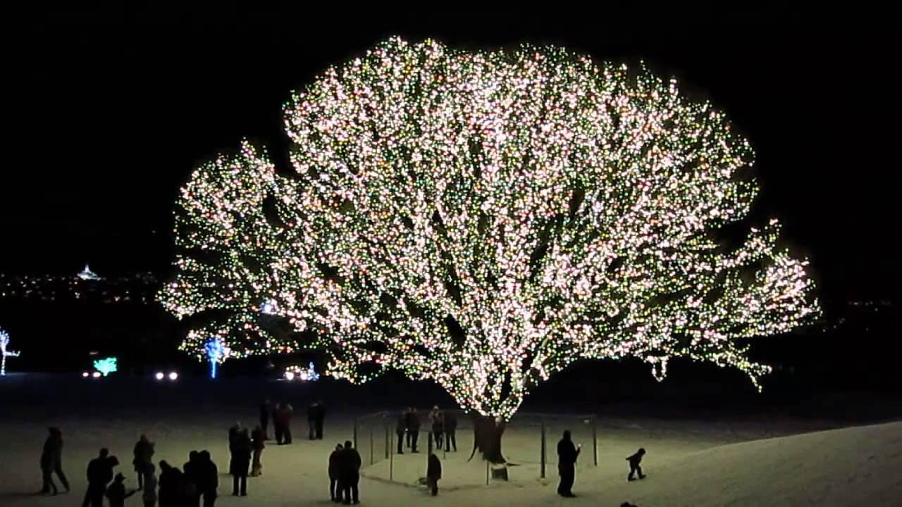 Christmas Lights Strands