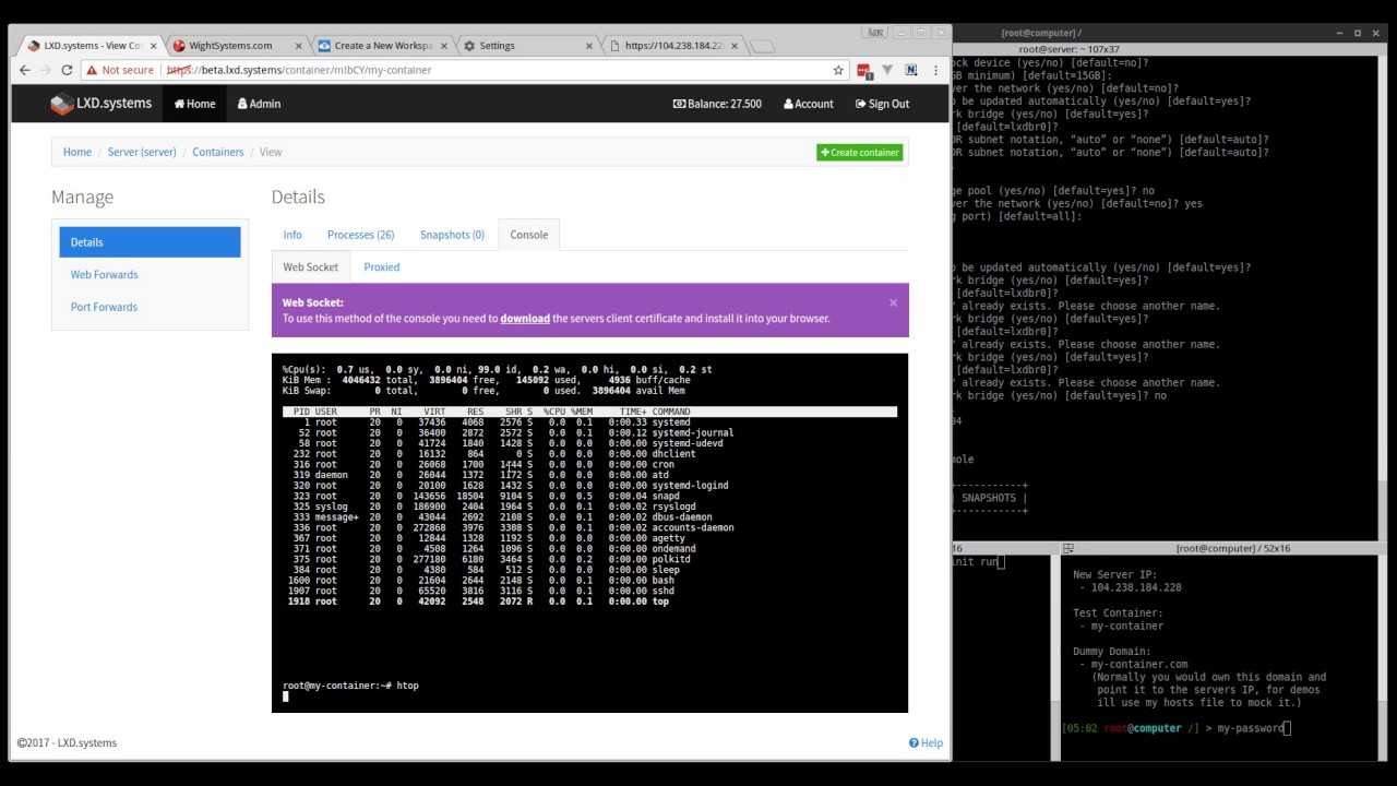 LXD systems - LXD, NGINX Web Proxy & Port forwarding control panel - Preview