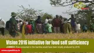GAMBIA PUTS THOUNSANDS OF LAND FOR RICE PRODUCTION, GAMBIAN LEADER