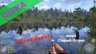 Русская рыбалка 4 озеро Старый Острог Садок щук на один воблер