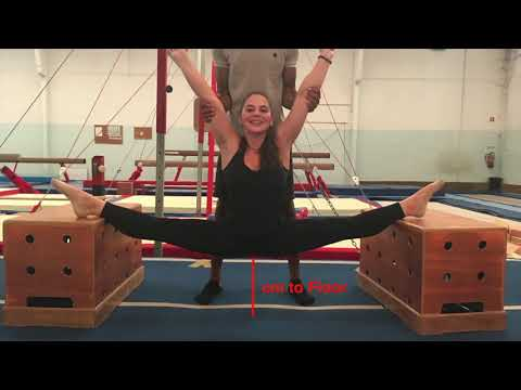 SALTO - Circus School - Auditions Tests