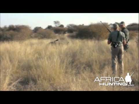 Hunting Buffalo Brain Shot Tanzania - AfricaHunting.com