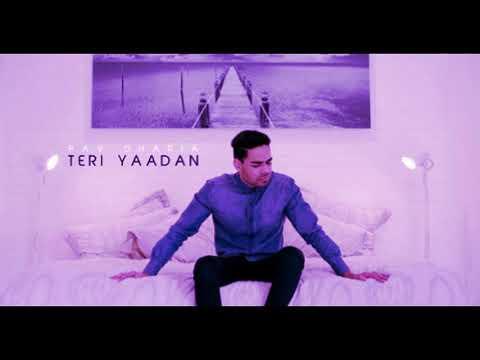 Teri Yaadan Lyrics & HD Video BASS BOOSTED - Pav Dharia