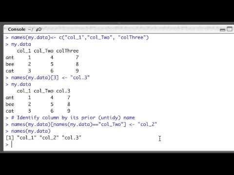 Naming and renaming columns in R dataframes