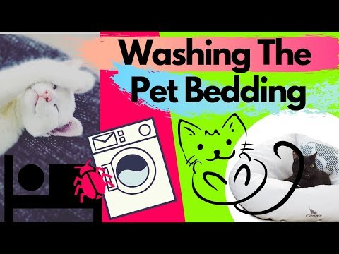 How To Wash Your Pet Bedding? + How Often
