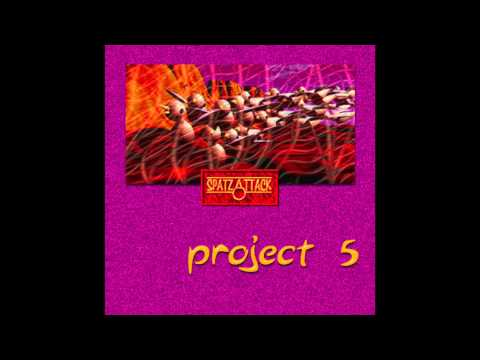 Spatz Attack - Project 5