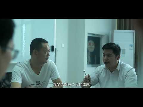 Zhejiang Lemond Power Equipment Company VIDEO