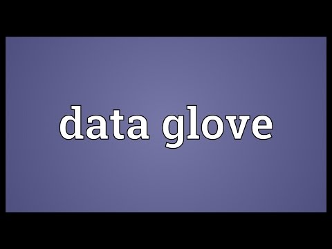 Data glove Meaning