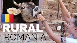 THE REAL RURAL ROMANIA 🇷🇴Baia Mare