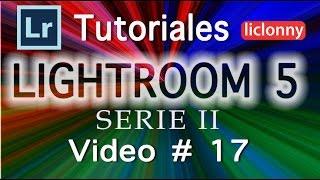 Lightroom 5 Serie II Tutorial 17. ¿Cómo trabajar con  Metadatos y las Palabras clave?. liclonny