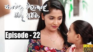 Paawela Walakule | Episode 22 26th October 2019 Thumbnail