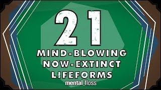 21 Mind-Blowing Now-Extinct Lifeforms - mental_floss on YouTube (Ep.51)