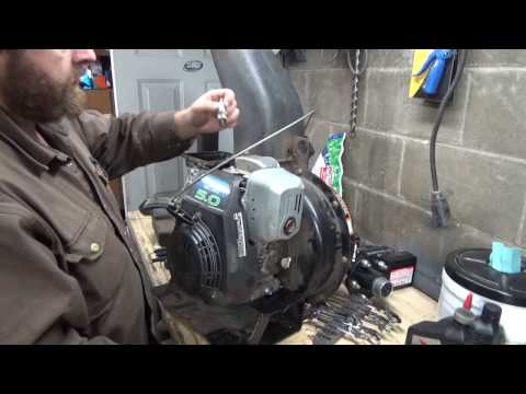 Preservation of our leaf vacuum's honda engine