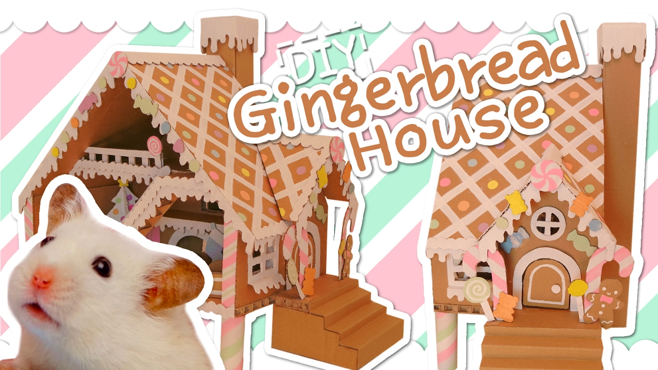 Cardboard Gingerbread House Hamster Diy Youtube