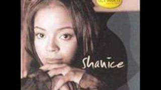 Watch Shanice The Way You Love Me video