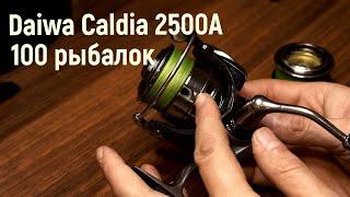 Daiwa Caldia 2500 A после 100 рыбалок Стоит покупать или нет