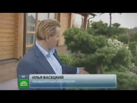 видео: Частный ландшафтный дизайн. Частный ландшафтный дизайн Илья Васецкий.