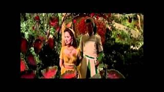 Stranger In Paradise - Ann Blyth & Vic Damone