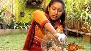 Repeat youtube video Sandhya Yadav - Terrarium demonstration on Udaya TV