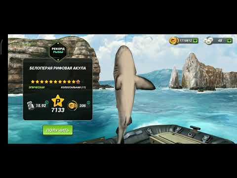 Событие Синяя акула особенности , рыбацкая битва Fishing Clash: Реальная рыбалка