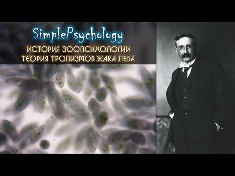 Всемирная история с Андреем Сидорчиком